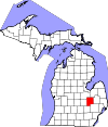 Genesee County Bankruptcy Court