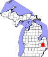 Lapeer County Bankruptcy Court
